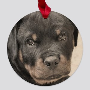Rottweiler Puppy Maple Round Ornament