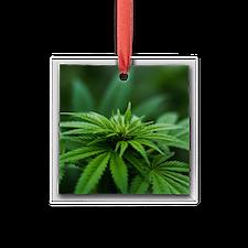 Marijuana Square Glass Ornament