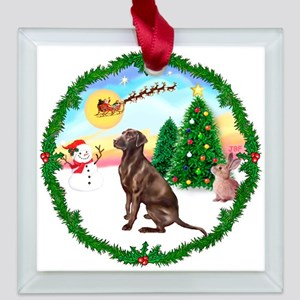 2-W-TakeOff-Lab-Choc.png Square Glass Ornament