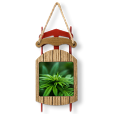 Marijuana Sled Ornament