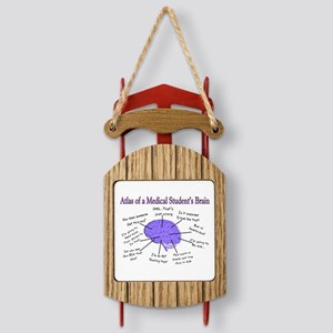 Atlas of a Medical Students Brain II Sled Ornament