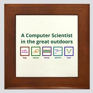 A Computer Scientist In The Great Framed Tile