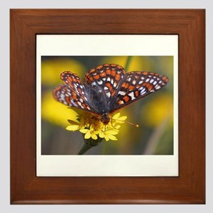 Butterfly on Yellow Flower Framed Tile