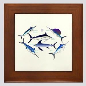 6 Billfish Framed Tile