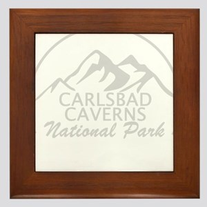 Carlsbad Caverns - New Mexico Framed Tile