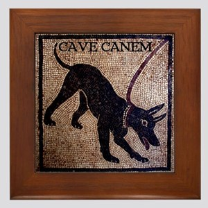 """Cave Canem"" Framed Tile"