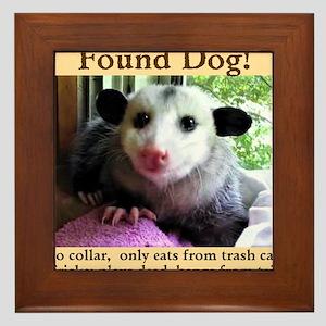 Funny Possum Wall Art - CafePress