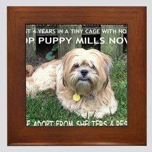 Stop Puppy Mills Wall Art - CafePress
