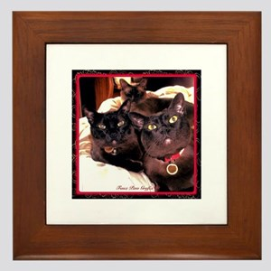 Three Cats Framed Tile