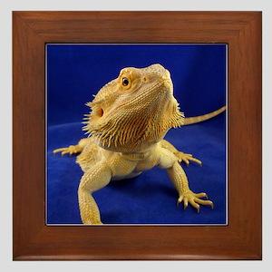 Bearded Dragon Framed Tile