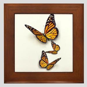 Monarch Butterlies Framed Tile