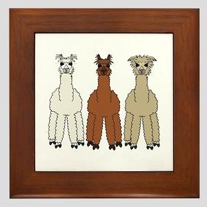 Alpaca (no text) Framed Tile