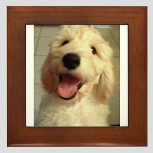 Happy Goldendoodle Framed Tile