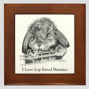 Lop Eared Bunny Framed Tile