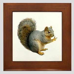 Peace Squirrel Framed Tile