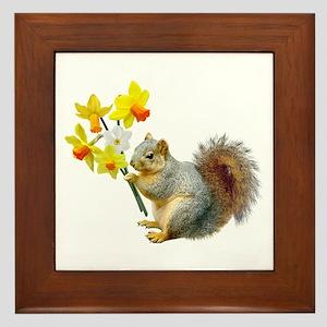 Squirrel Daffodils Framed Tile