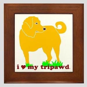 I Love My Tripawd Golden - Front Leg Framed Tile
