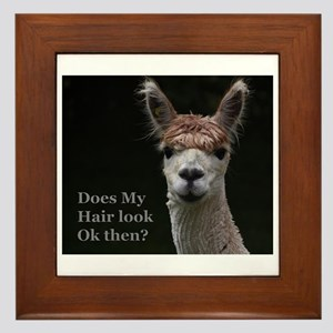 Alpaca with funny hairstyle Framed Tile