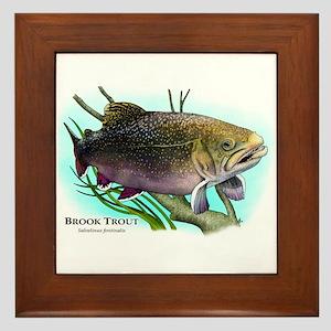 Brook Trout Framed Tile