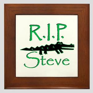 R.I.P. Steve Framed Tile