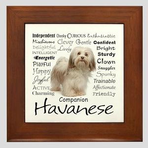 Havanese Traits Framed Tile