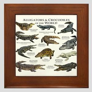 Alligator & Crocodiles of the World Framed Tile