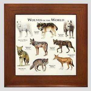 Wolves of the World Framed Tile