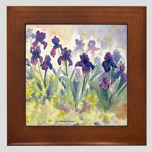 SQ Purp Irises for CP shower curtain Framed Tile