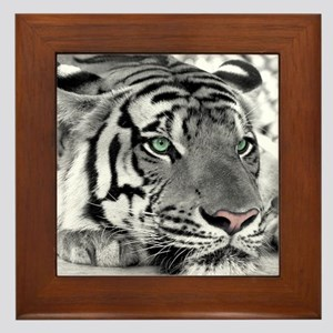 Lazy Tiger Framed Tile
