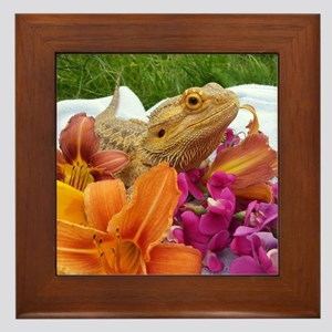 Floral beardie Framed Tile