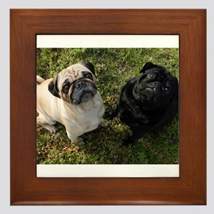 Pug Framed Tile