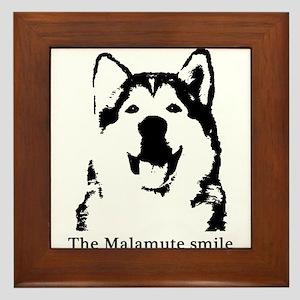 The Malamute Smile Framed Tile