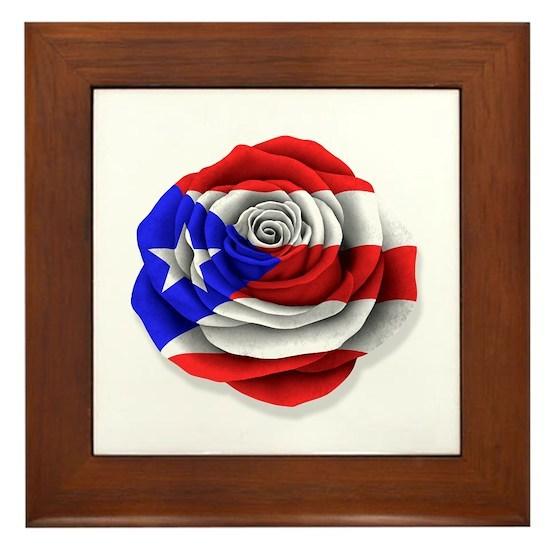 Puerto rican rose