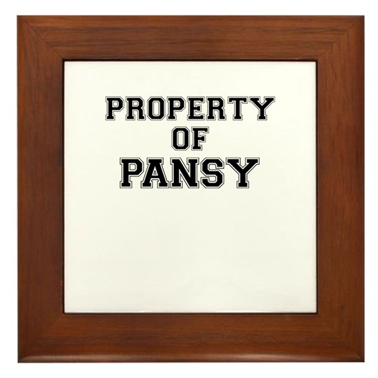 Property of PANSY