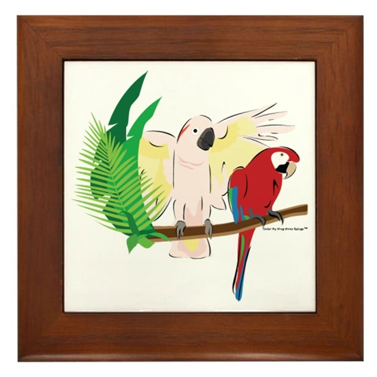 Parrot, Parrots and Bird Design