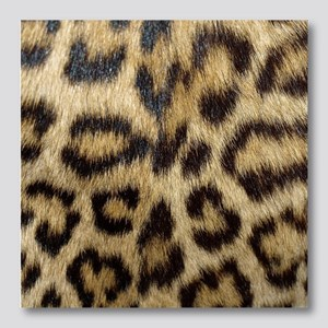 Leopard Print Photo Wall Tile