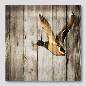 rustic western barnwood duck Photo Wall Tile