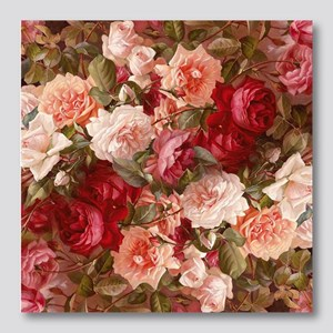Floral Pink Roses Photo Wall Tile