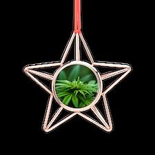 Marijuana Copper Star Ornament
