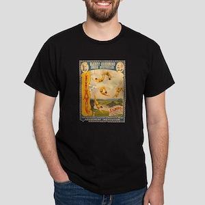 Masterly Monarchs Of The Air Dark T-Shirt