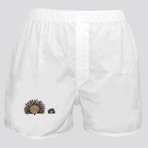 A01 Hedgehogs Boxer Shorts