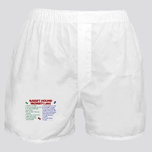 Basset Hound Property Laws 2 Boxer Shorts