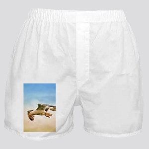 Flying Seagulls Boxer Shorts