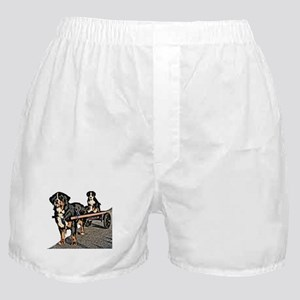 Back Seat Drafter Boxer Shorts