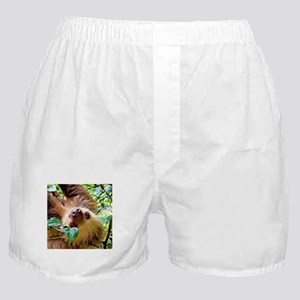 awesome Sloth Boxer Shorts