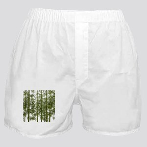 zen trees chinese bamboo Boxer Shorts