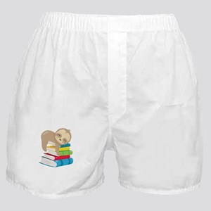 Cute Sloth Books Boxer Shorts