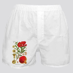 Vintage Pomegranate Boxer Shorts