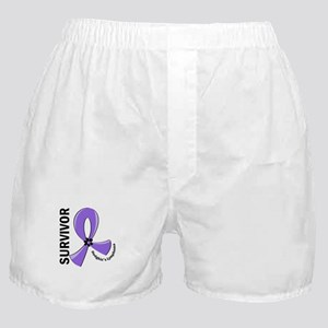 Hodgkin's Lymphoma Survivor 12 Boxer Shorts