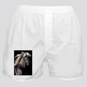 choco_horse_journal Boxer Shorts
